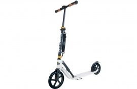 Hudora Big Wheel Air 230 (2019)